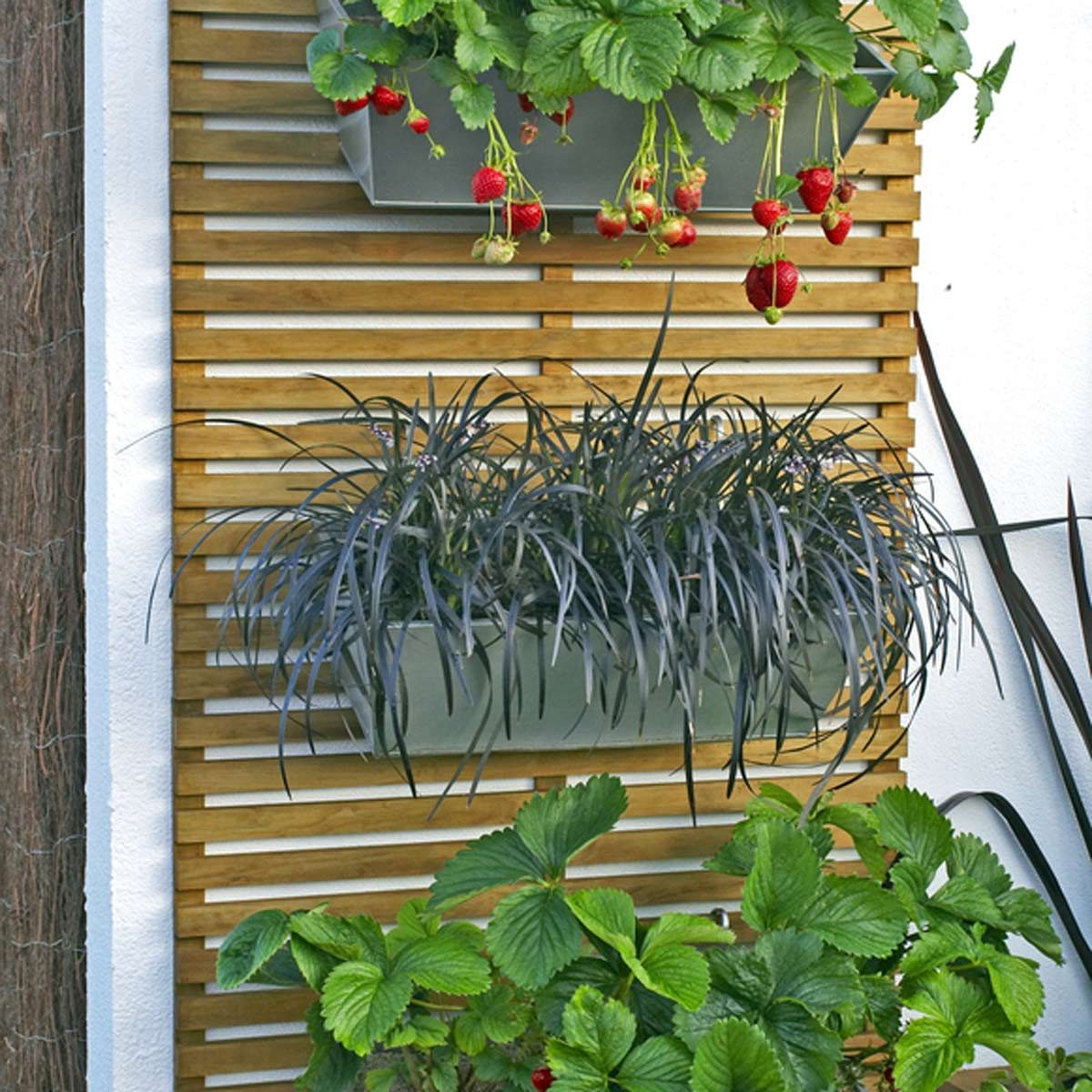 backyard ideas for small yards using hanging plants