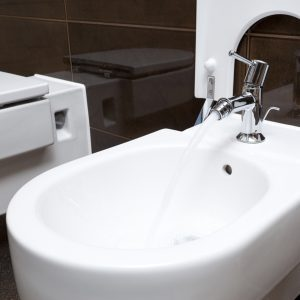 What is a Bidet, and Why You Need One