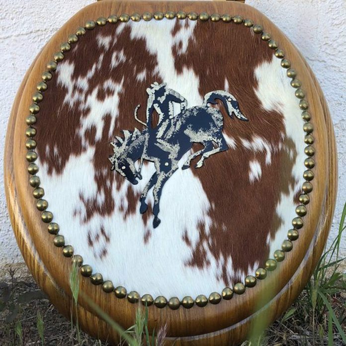 cowboy toilet