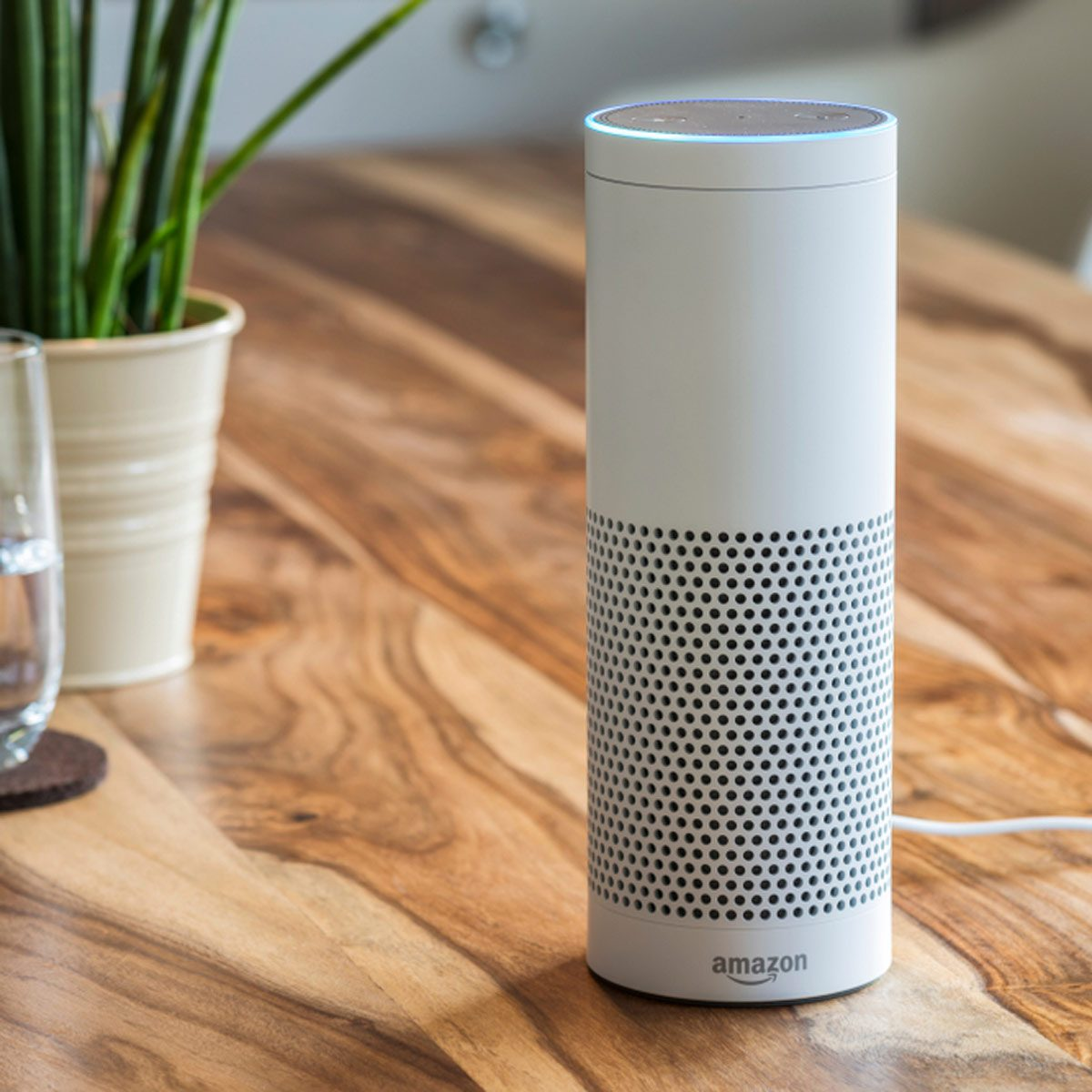 11 Weird Things Your Alexa Is Capable Of The Family Handyman How To Roughin Electrical Wiring