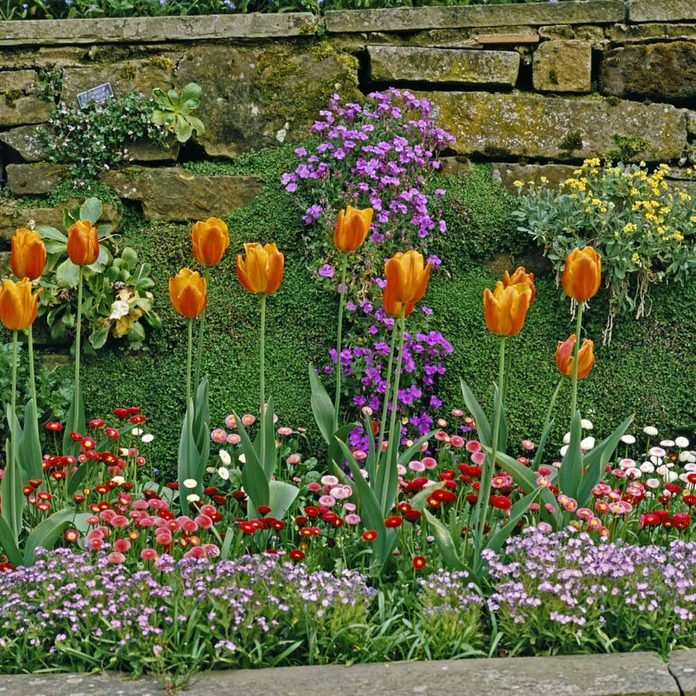 14 Small Yard Landscaping Ideas To Impress Family Handyman