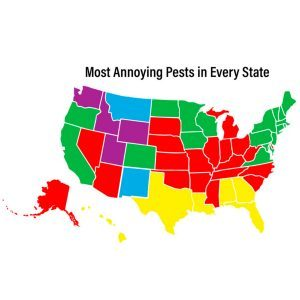 These Are The Most Annoying Pests In Every State