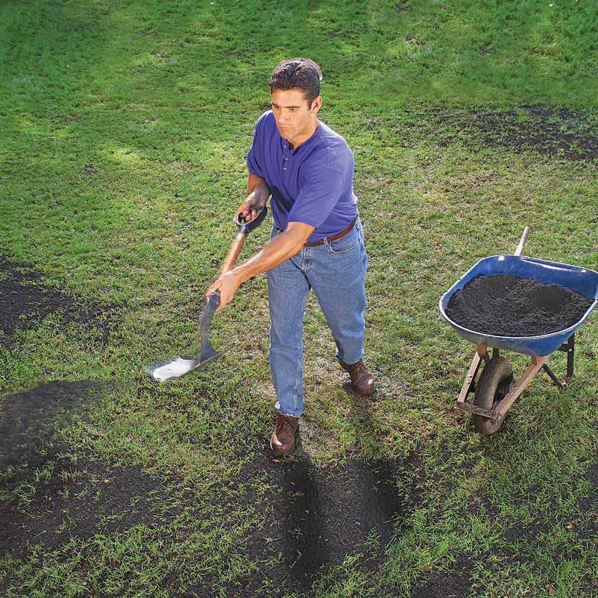18 Things You Should Never Do To Your Lawn | The Family Handyman