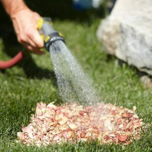 Spot-Watering Tip For Grass Seed