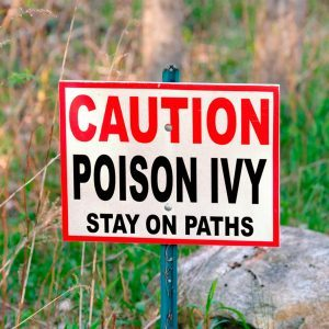 Here's How to Avoid Poison Ivy All Summer Long