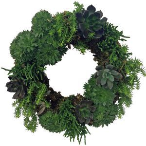 15 Stunning Living Wreath Ideas