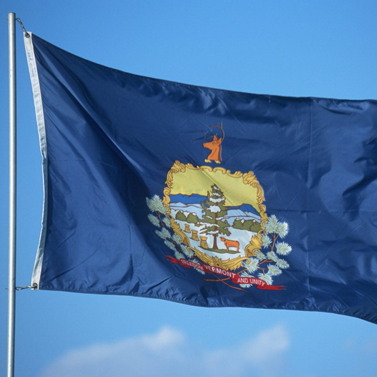 Flag of Alaska: history and description. Benny Benson - the creator of the flag of the northern state