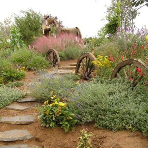 10 Unusual Landscape Borders