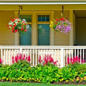 hanging plants on front porch