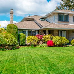 How to Save Your Grass From Summer Heat
