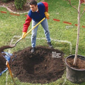 15 Expert Tips for Digging Holes