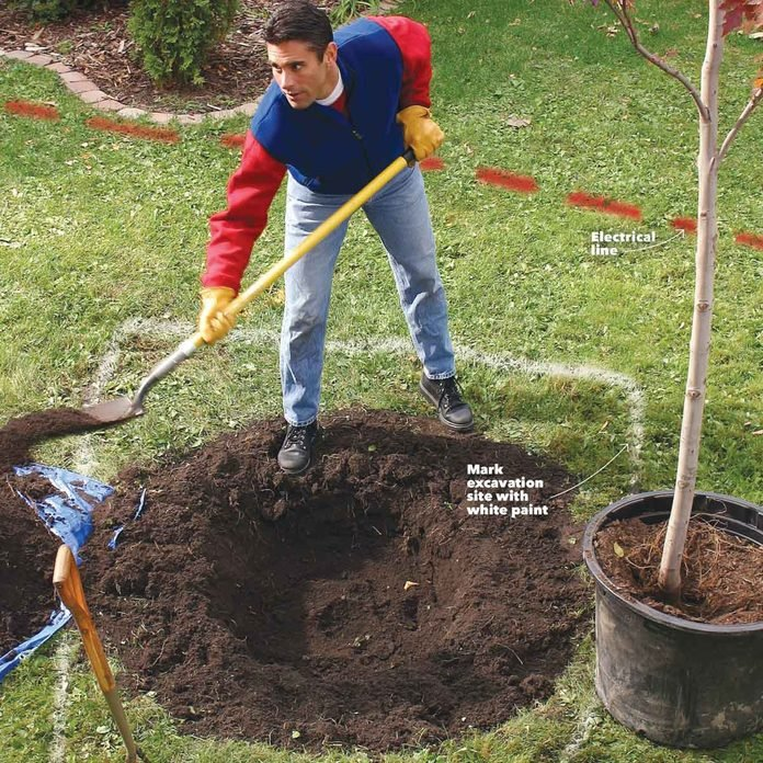 digging holes hole for planting trees