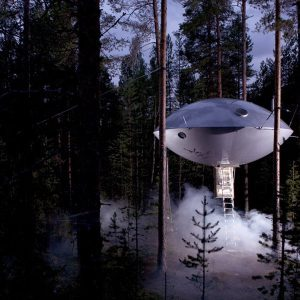 19 Treehouses That Look Like UFOS
