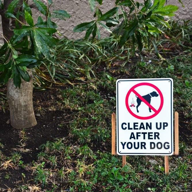 pick up your dog poop yard sign