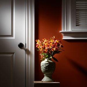 Simple Window Trim and Door Trim Guide