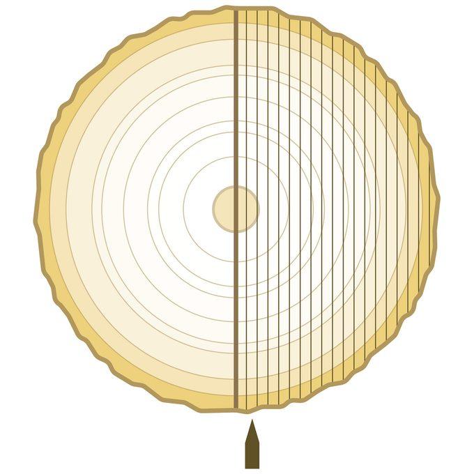plain slicing plywood veneer cut