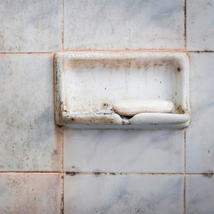 What is That Disgusting Pink Slime in Your Bathroom?