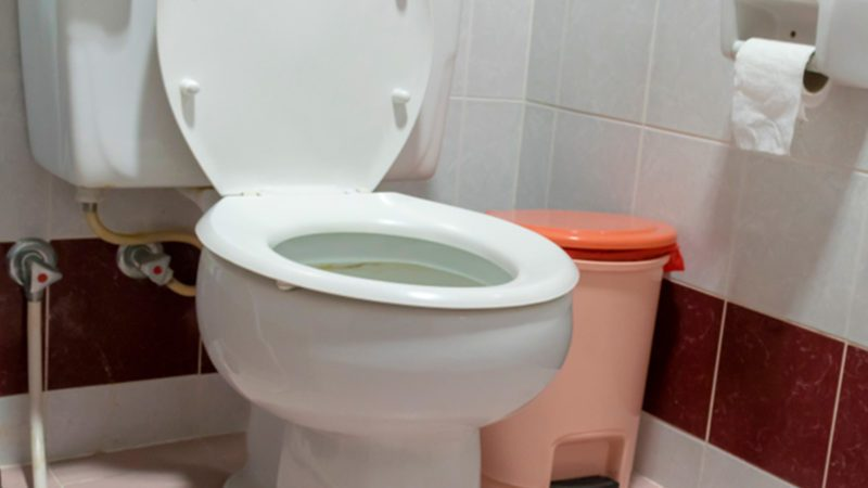Always Close the Toilet Lid When You Flush, Here's Why | The