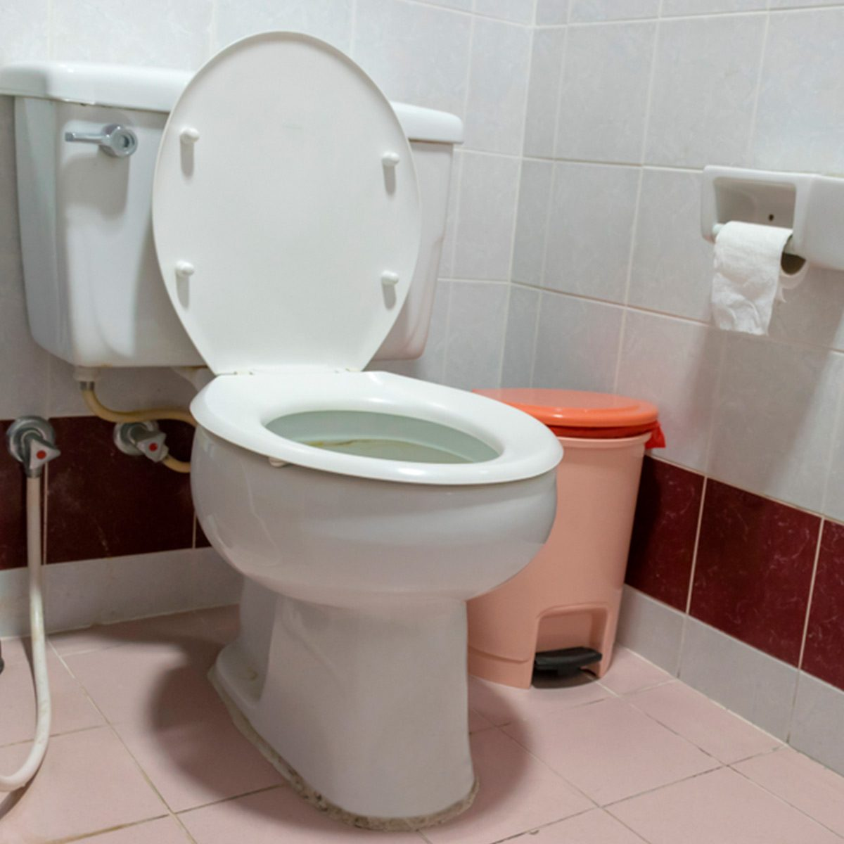 Surprising Always Close The Toilet Lid When You Flush Heres Why Onthecornerstone Fun Painted Chair Ideas Images Onthecornerstoneorg