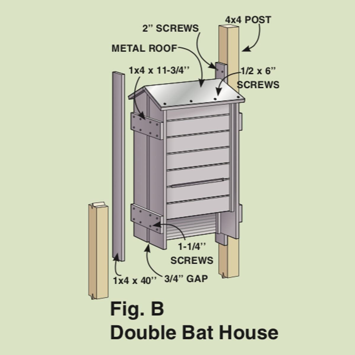 The Bats Are Living In Wrong House