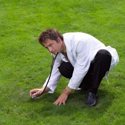 lawn care tips for fixing lawn spots demonstrated by a lawn