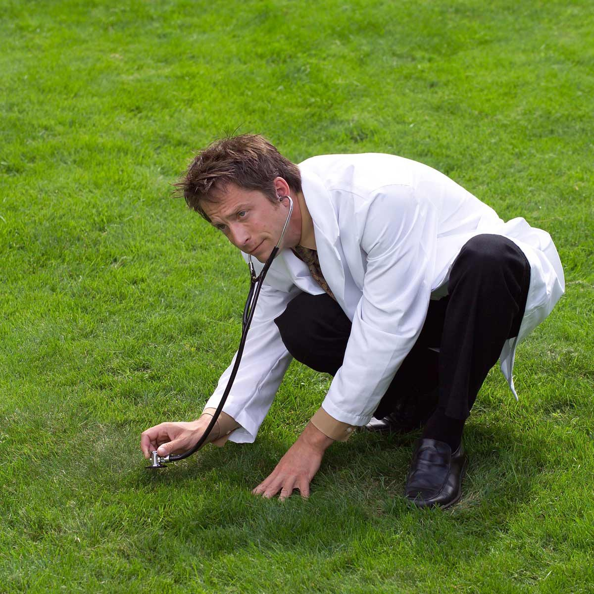 "lawn care tips for fixing lawn spots demonstrated by a lawn ""doctor"" using a stethescope for monitoring the health of the grass and soil"