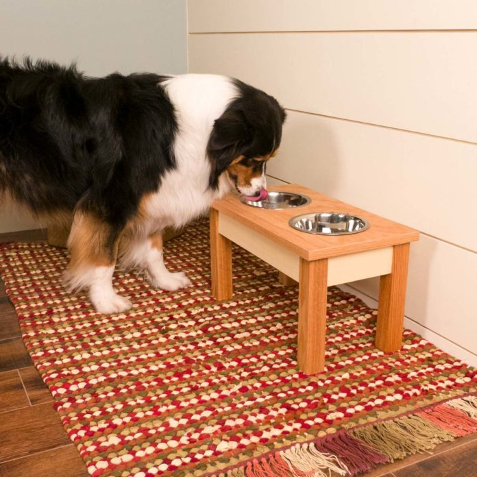7 Amazing Woodworking Projects You Can Make for Your Pet