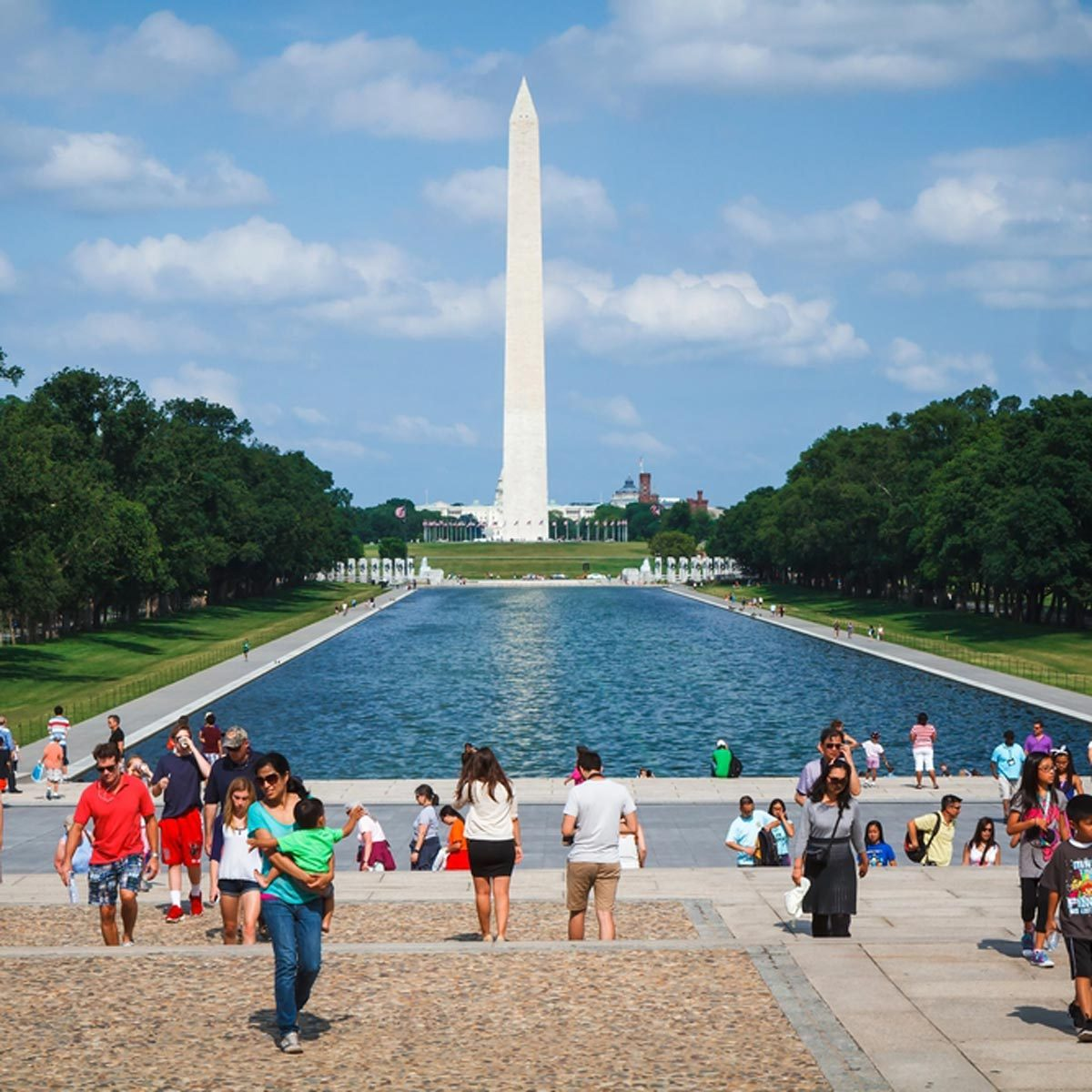 Orkin Locations & Hours Near Washington, DC - YP.com