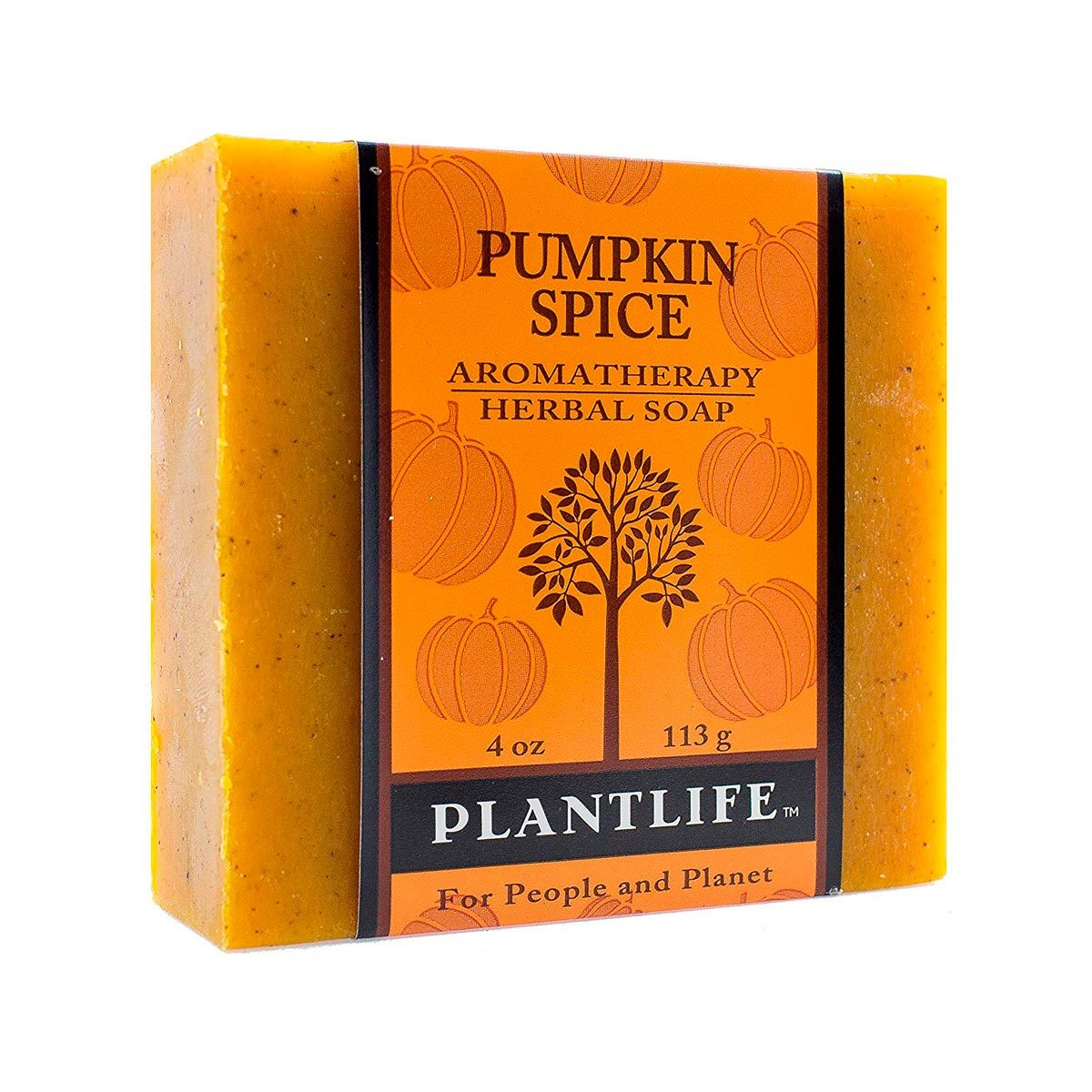 pumpkin spice herbal soap