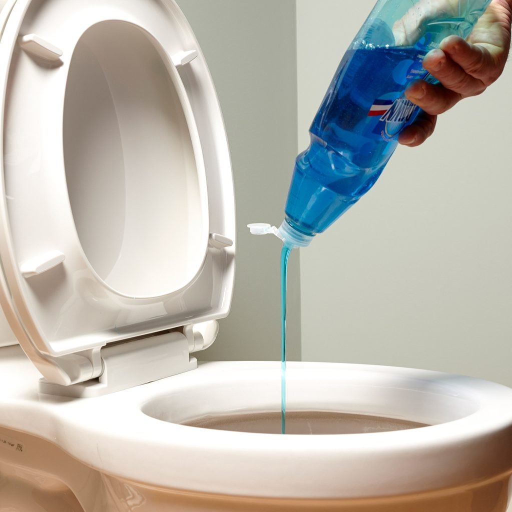 Unclog a toilet with dish soap