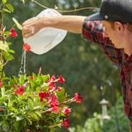 How to Turn an Empty Milk Jug Into a Watering Can