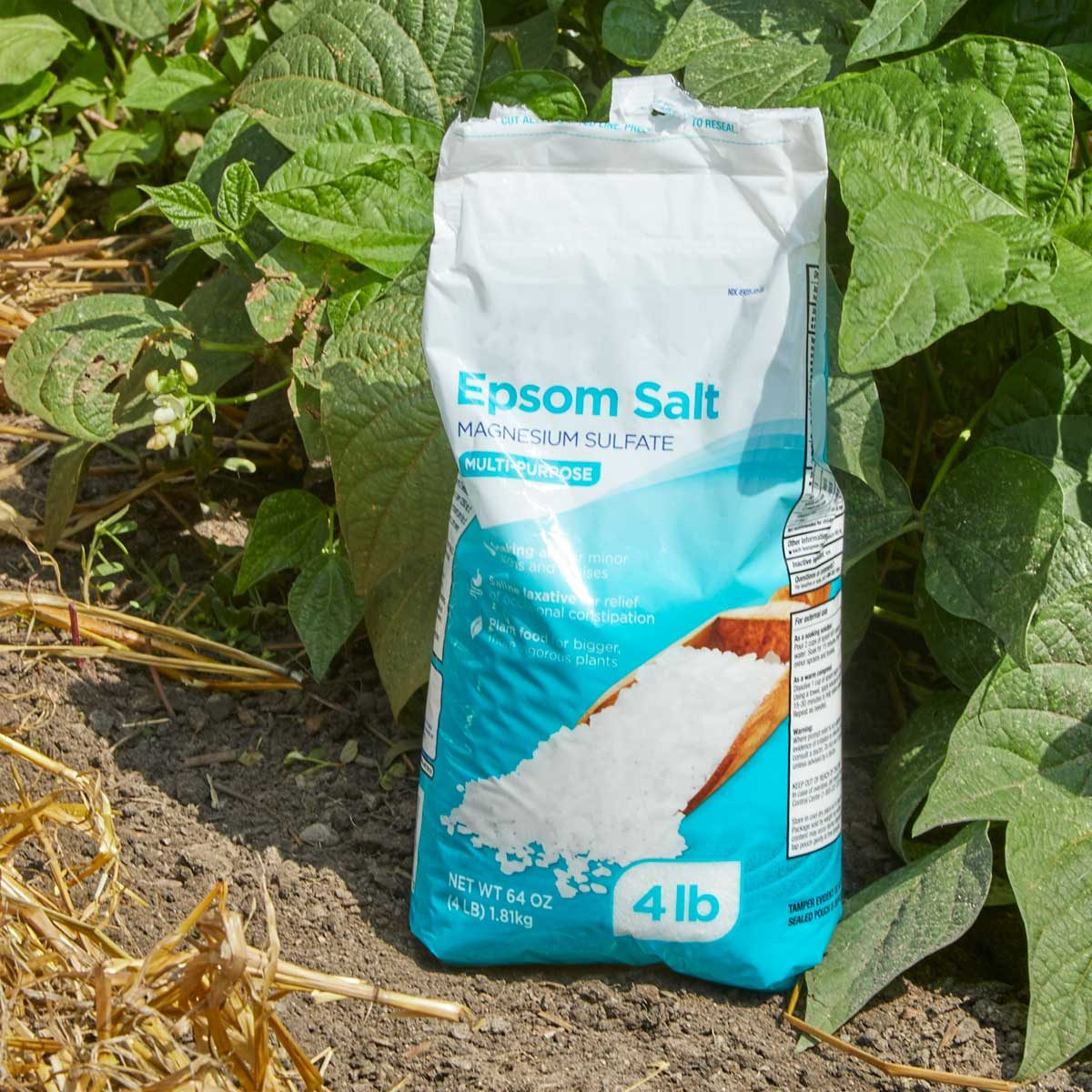 epsom salt fertilizer 2