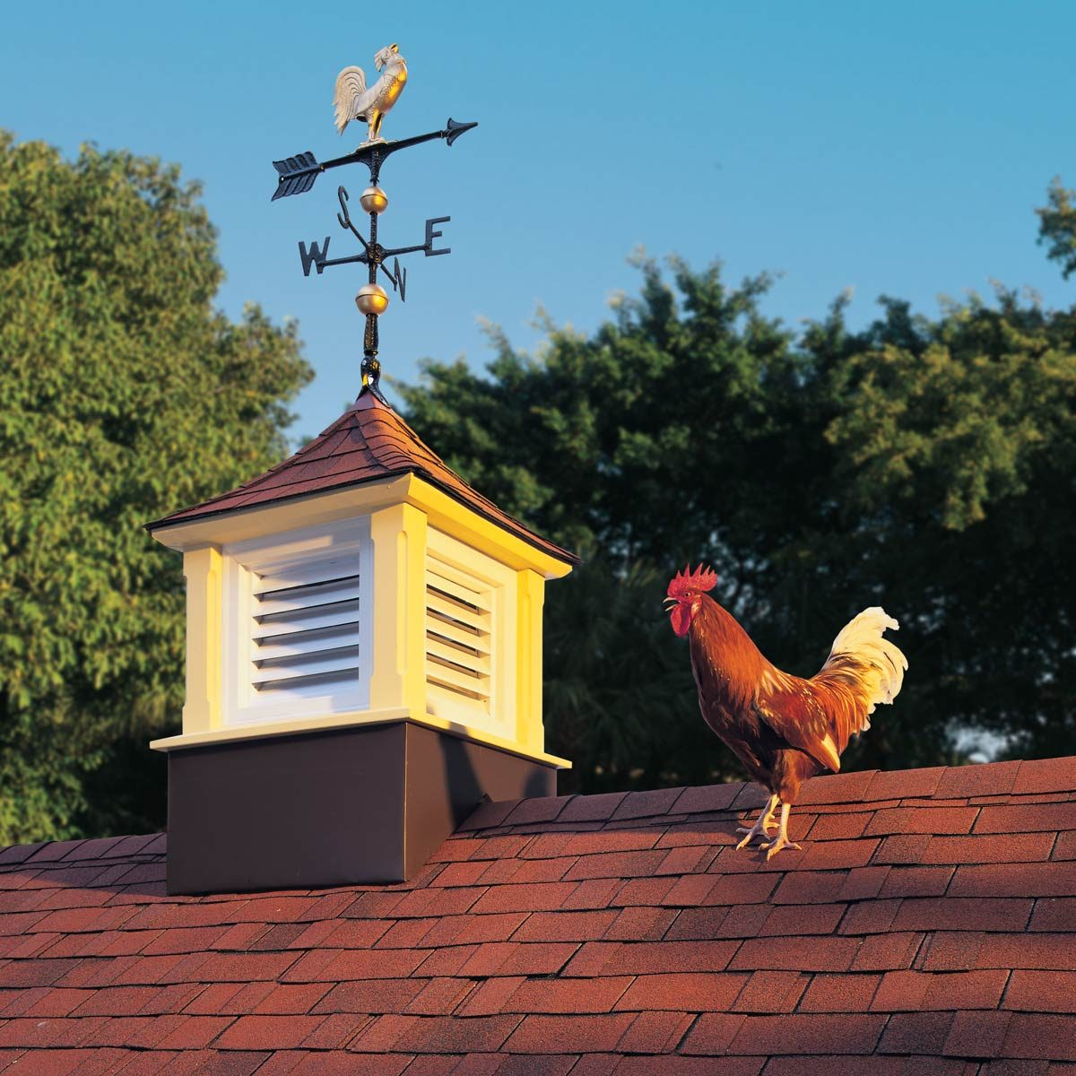 How To Build A Garage Or Shed Cupola Family Handyman The Family