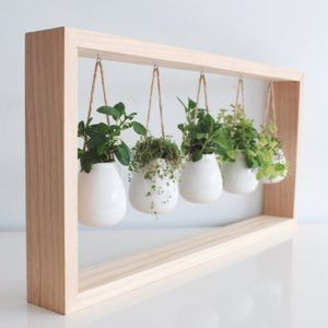 10 Charming Indoor Herb Garden Planters