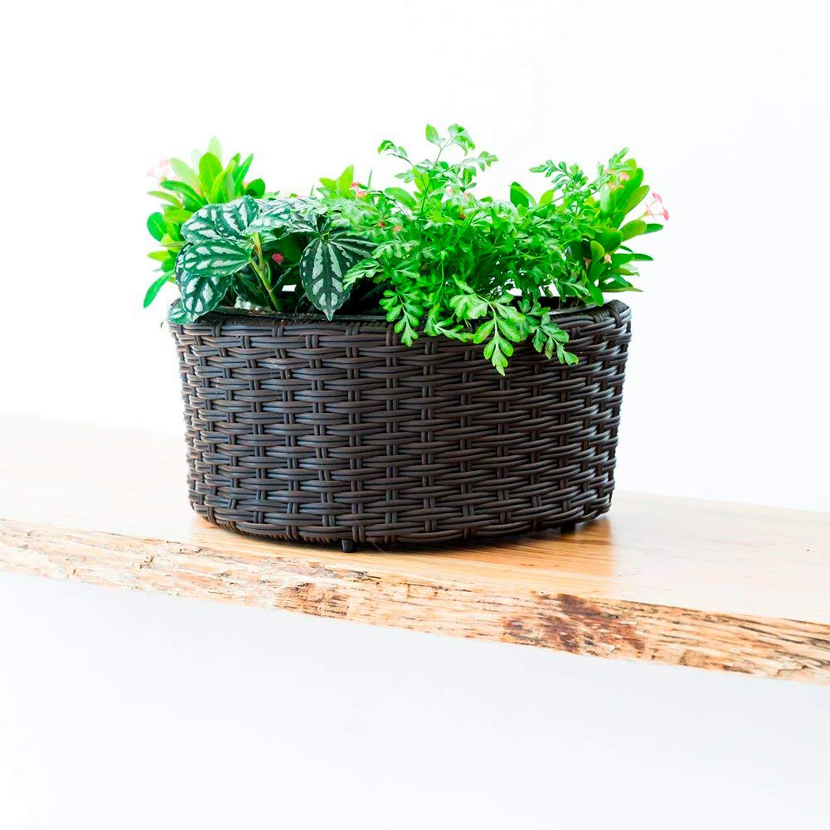 Hanging Or Freestanding Woven Pot