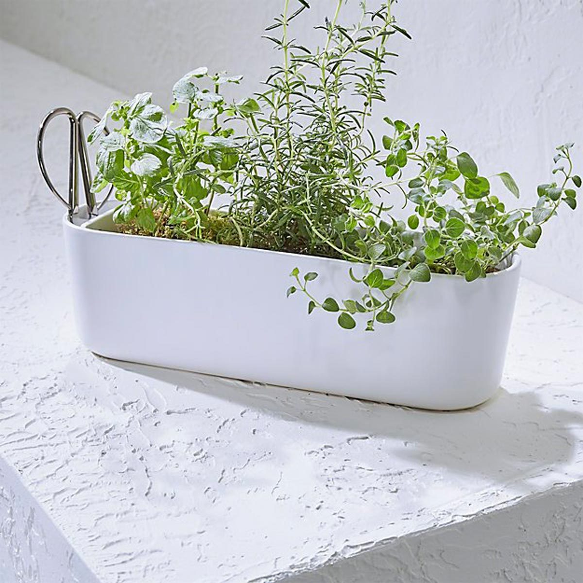 10 Charming Indoor Herb Garden Planters Family Handyman