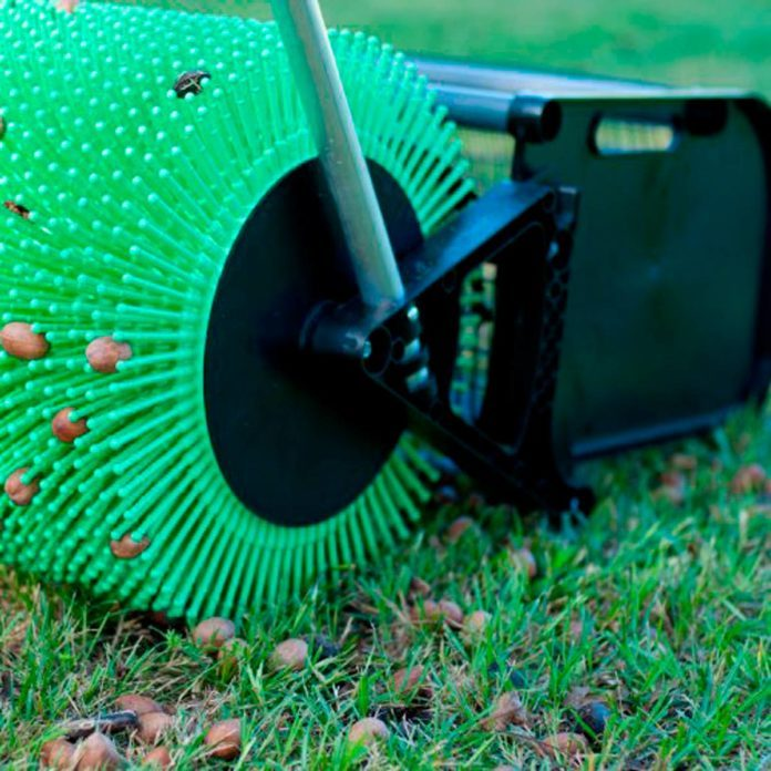 Must-Have Products to Make Fall Yard Work a Breeze