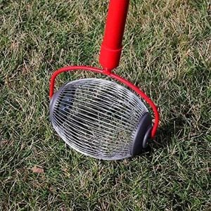 5 Tools That Make Fall Lawn Cleanup So Much Easier