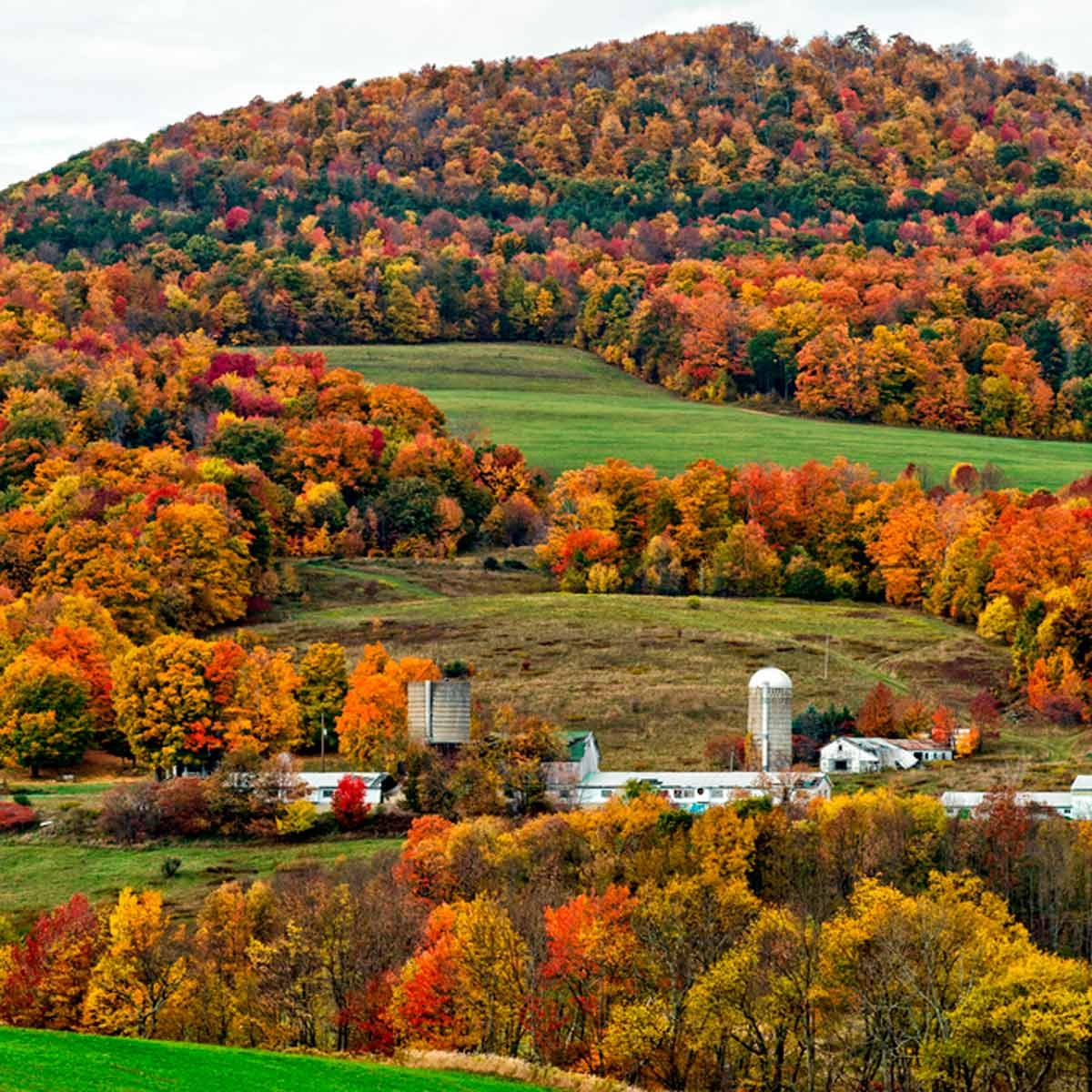 15 Best Places to See Fall Colors in the U.S.
