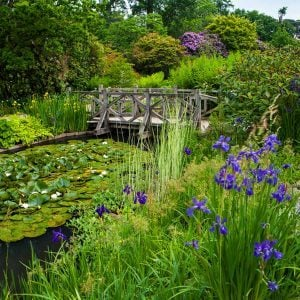 The Royal Horticultural Society's Must-Visit Gardens