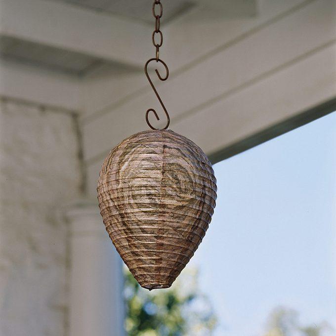 fake wasp nest
