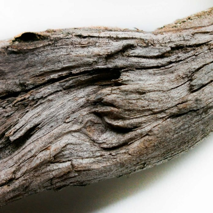 Salty driftwood can corrode your fireplace.