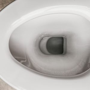 How a Toilet Works