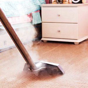 What to Know About Steam Cleaners