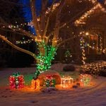 Homeowners' Guide to Outdoor Christmas Lights