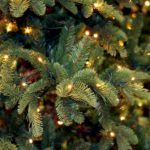 Buyer's Guide: The Best Christmas Tree Lights