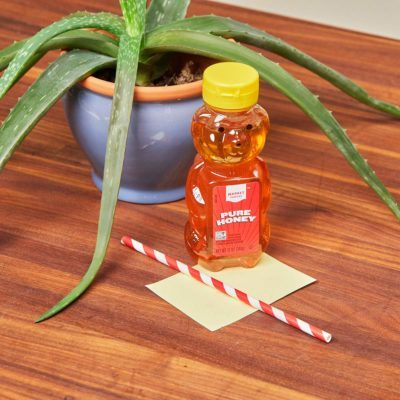 HH handy hint honey sticky gnat trap yellow index card