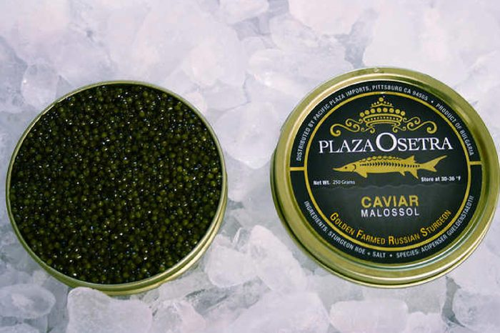 Plaza Osetra Golden Farmed Sturgeon Caviar