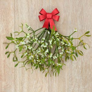 What's Up With the Holiday Tradition of Kissing Under the Mistletoe?