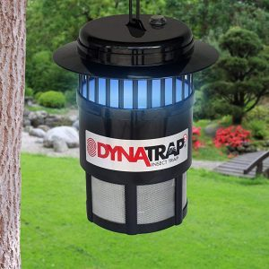 Eliminate Bugs in Your Yard with the Dynatrap Insect Trap